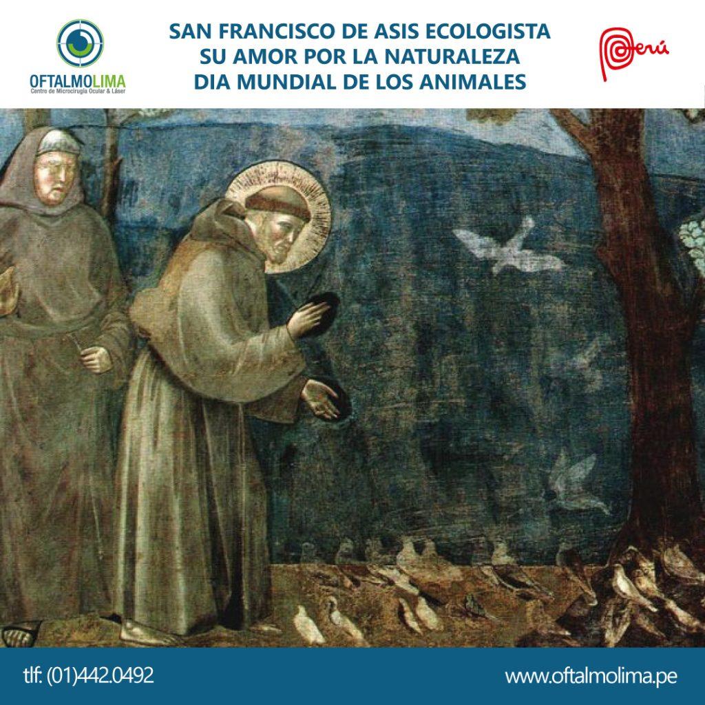San Francisco de Asís Ecologista, su amor por la naturaleza y los animales